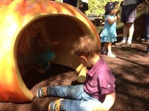 Hollow pumpkin!